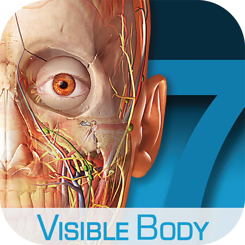 Human Anatomy Atlas for zSpace for medical learning