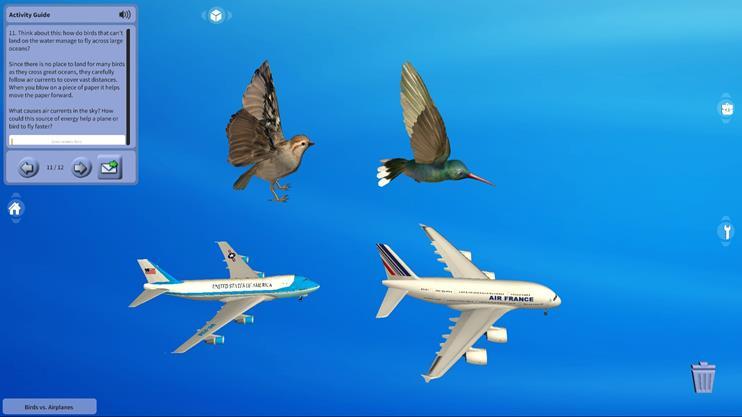 새 대 비행기