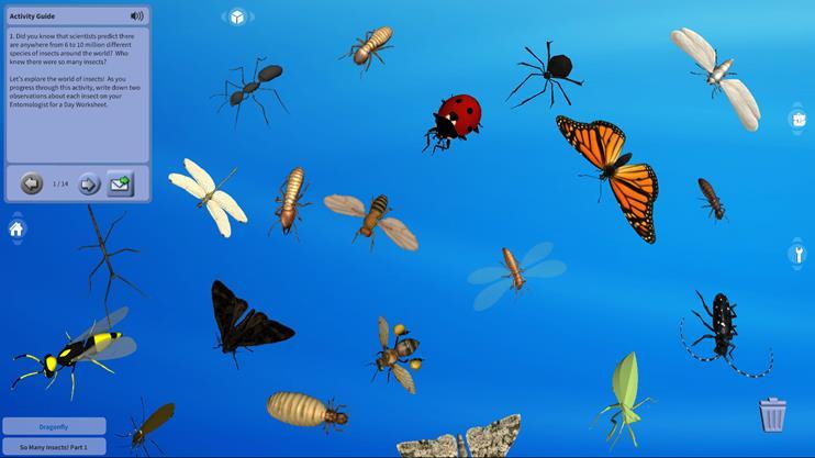 너무 많은 곤충