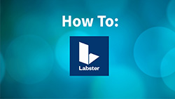 How to: Labster