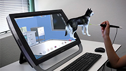 Virtual Veterinary Training on zSpace